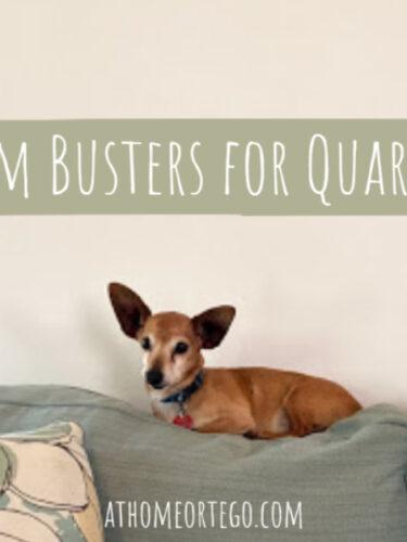 Boredom Busters for Quarantine